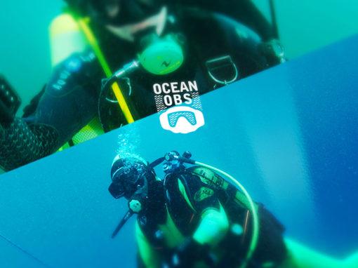 Web Application Ocean'Obs
