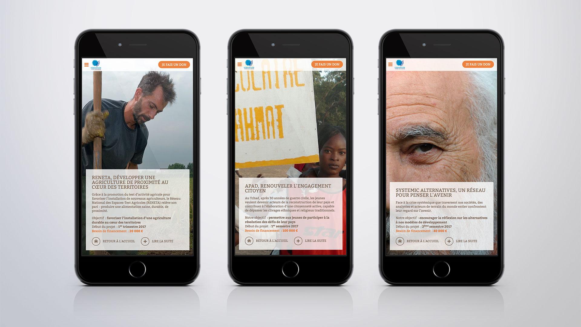 Site Internet de la Campagne de don en ligne pour le CCFD-Terre solidaire