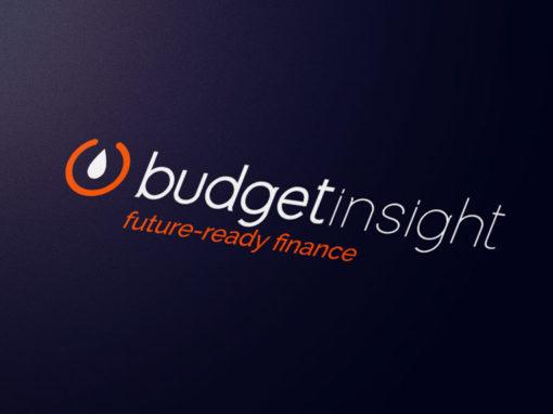 Refonte de l'identité visuelle de Budget Insight et supports de communication